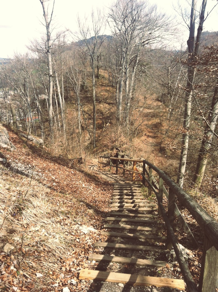 Running through the woods. Very Walden-esque