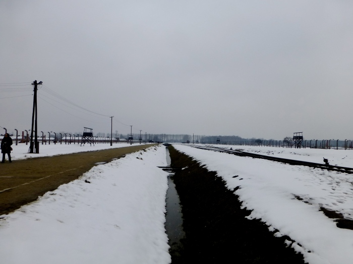 The train tracks going into Dachau camp. People familiar with Elie Wiesel may recognize this walk where Oprah interviewed him.