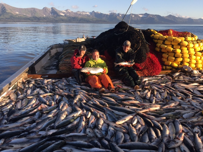 Looking back: A salmon summer in Prince WilliamSound